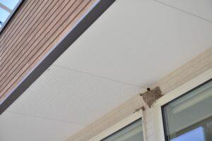コトリカフェ 外観 幸福のツバメの巣